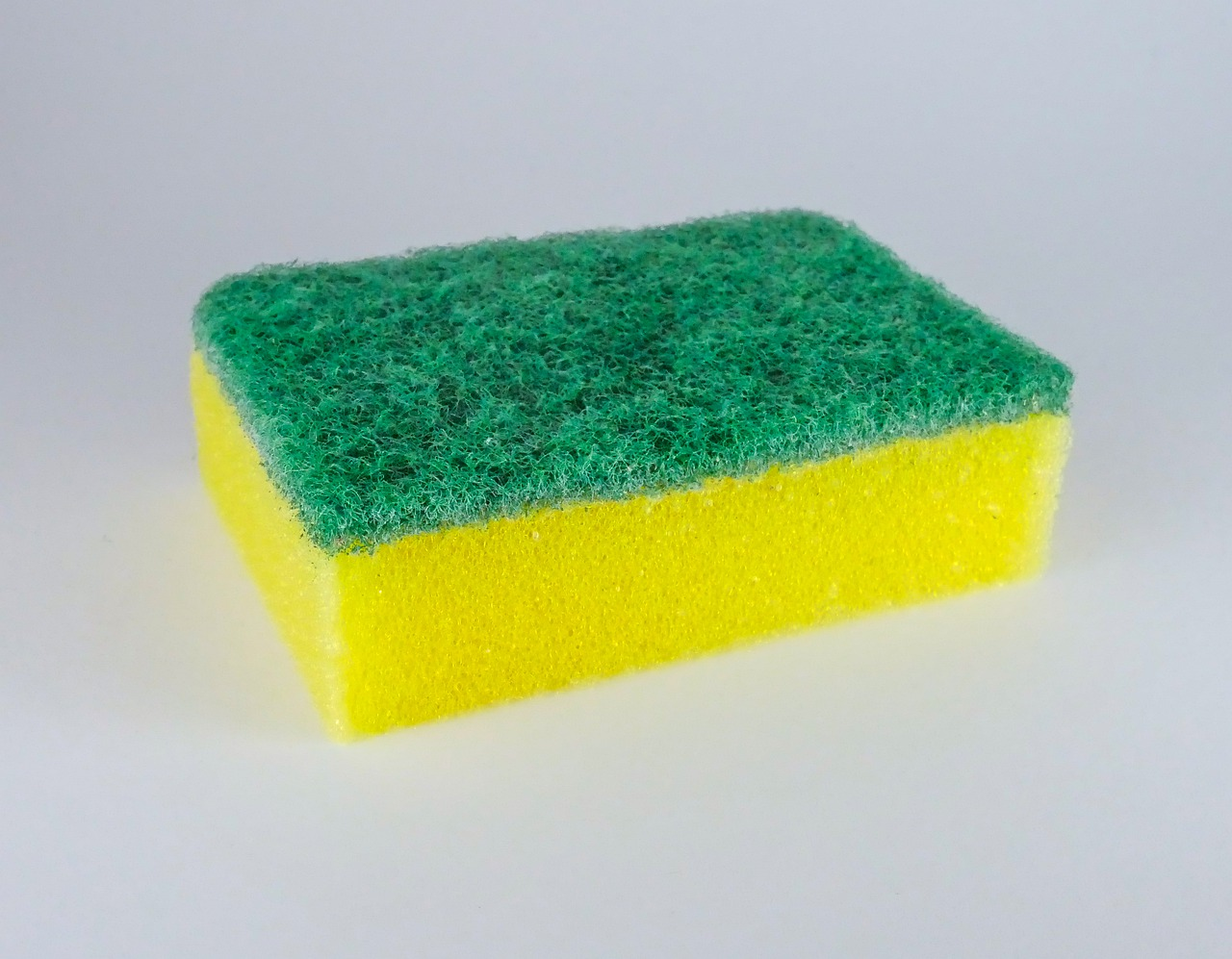 sponge-4501300_1280
