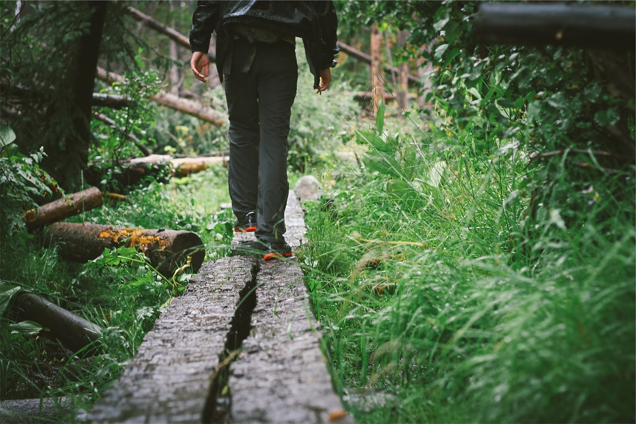 walking-698793_1280