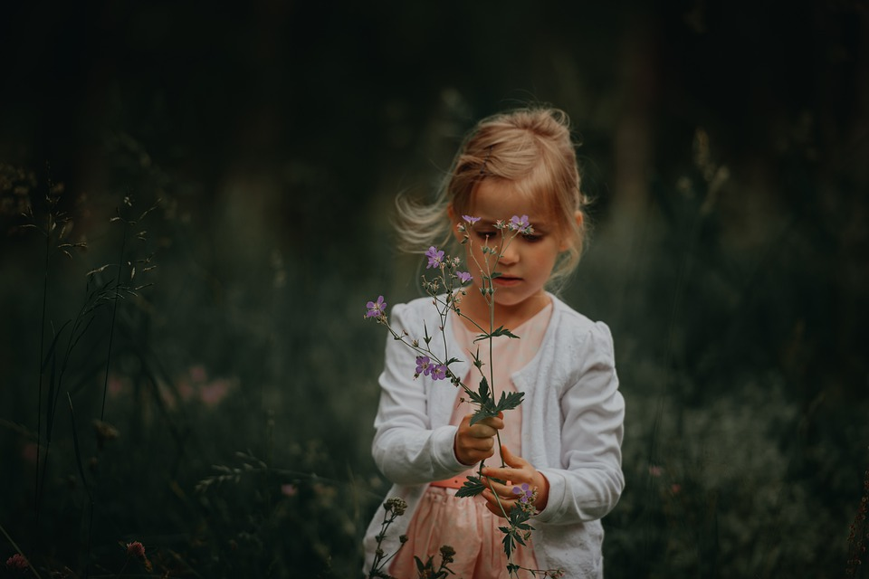 flowers-4436910_960_720