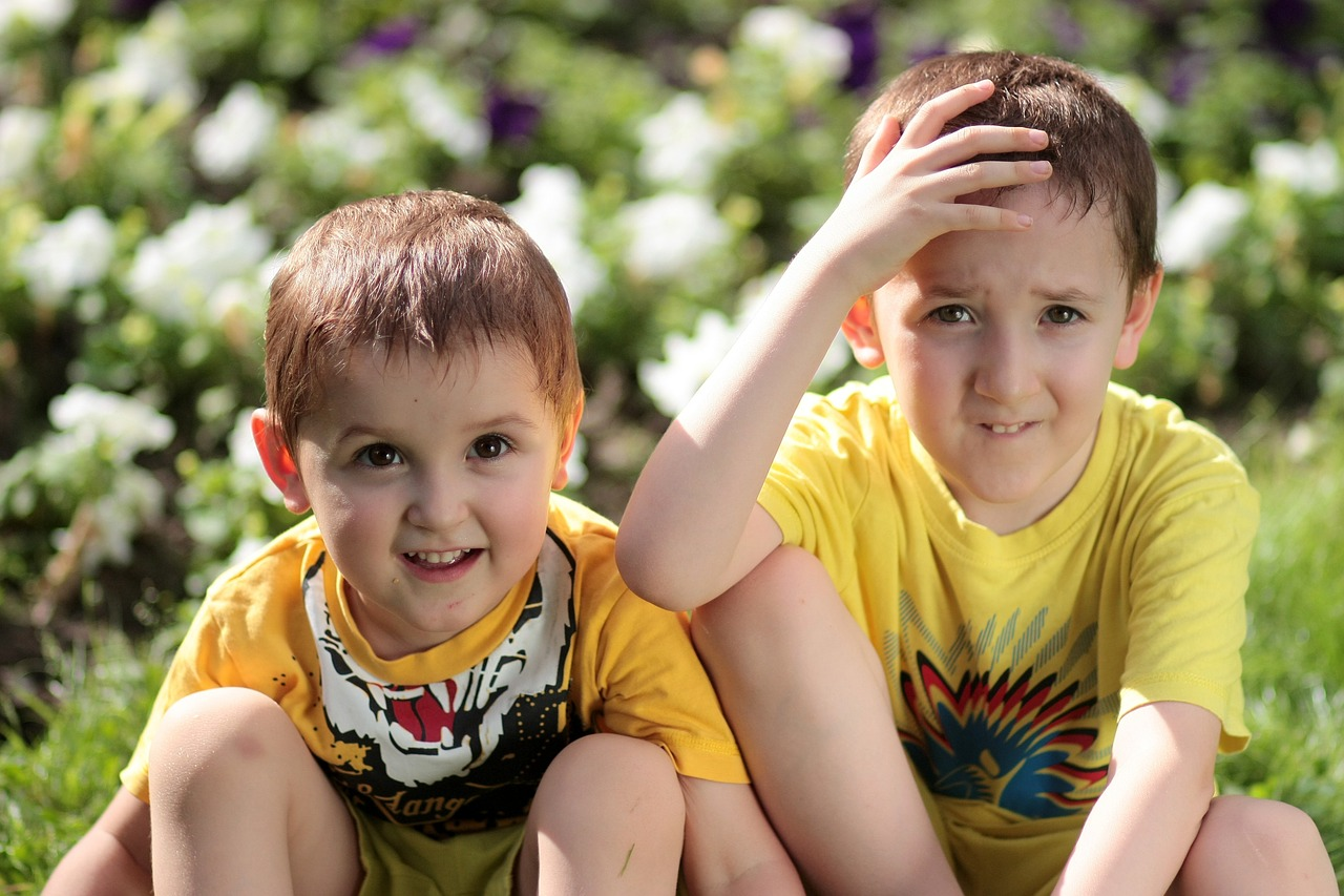 brothers-1507696_1280