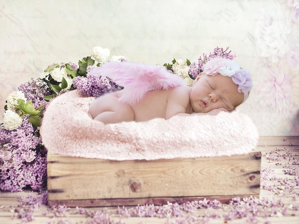 flowers-2923998_960_720
