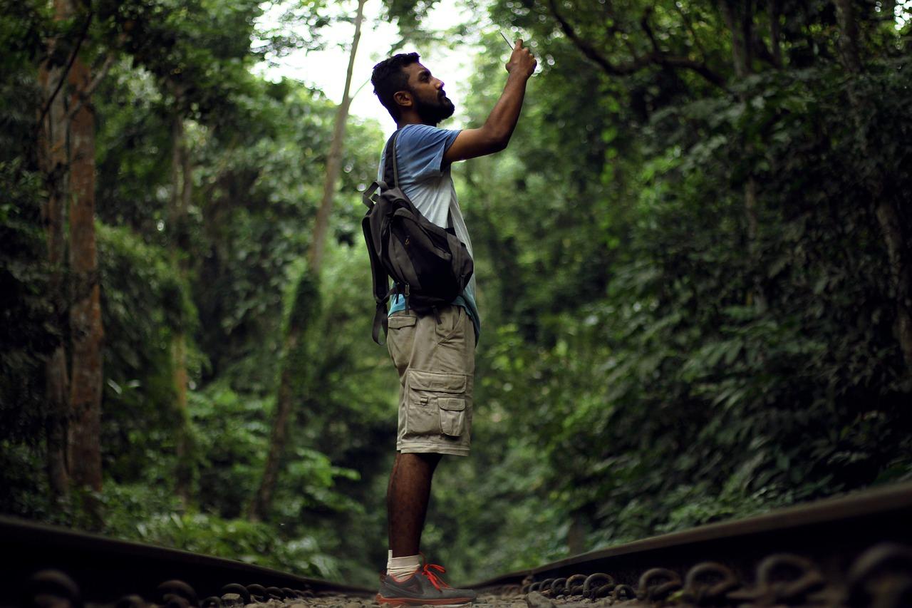 jungle-2738300_1280