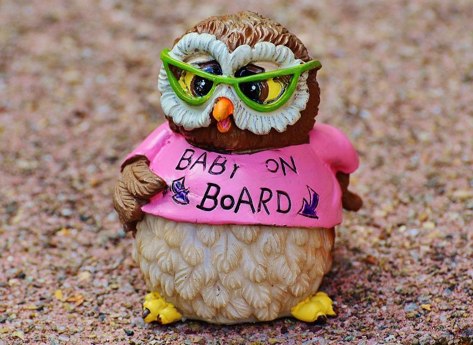 owl-947735_960_720