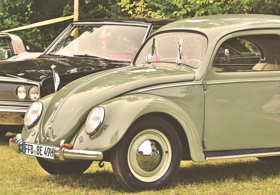 pretzel-beetle-4520038_960_720