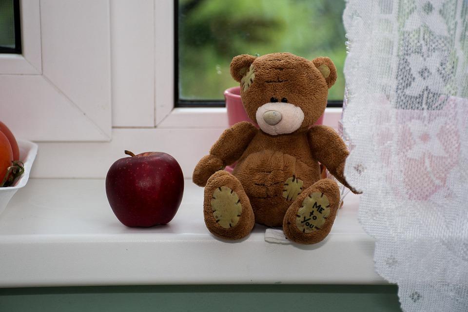 teddy-5343295_960_720
