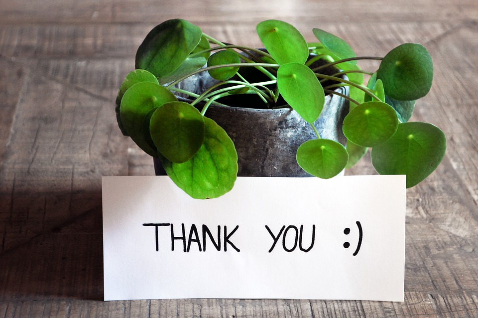 thank-you-3690116_960_720