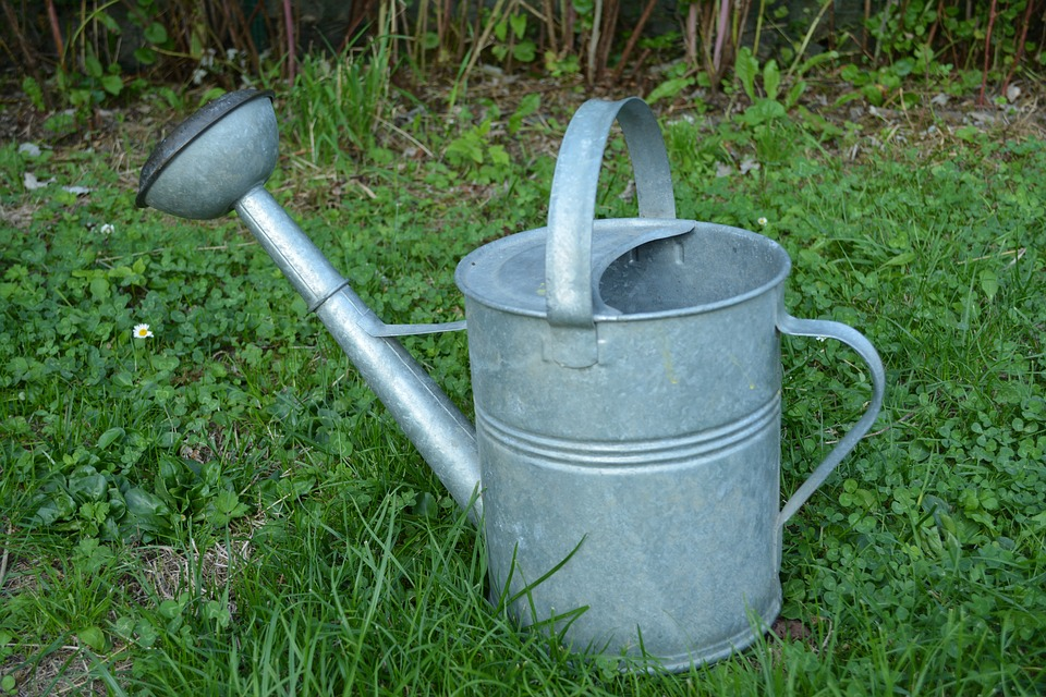 watering-can-1376691_960_720
