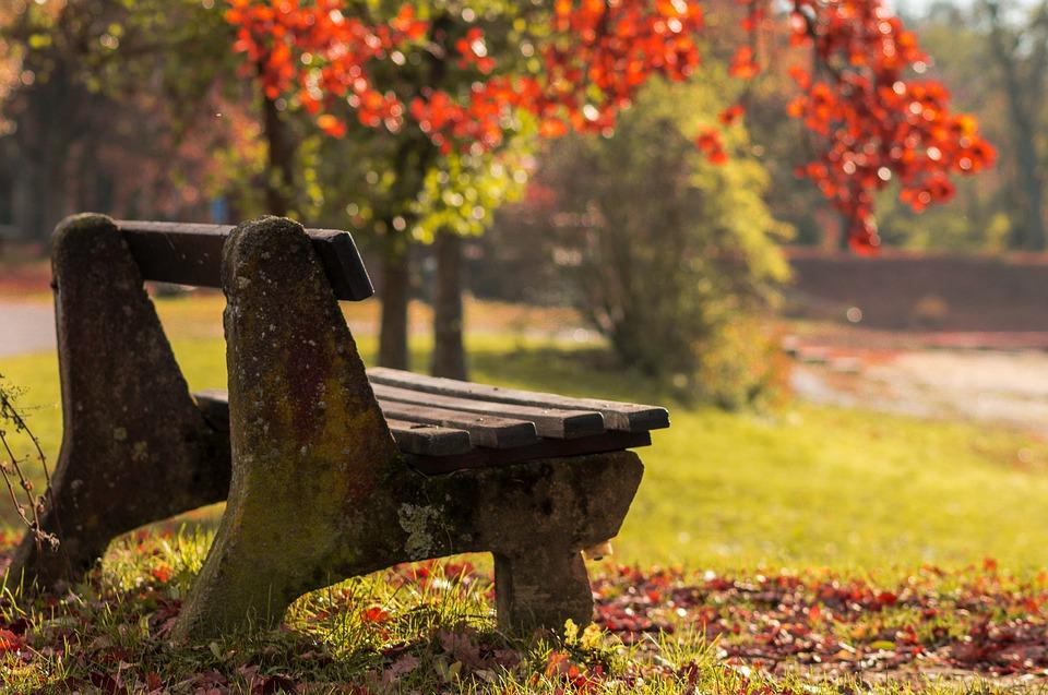 autumn-4828094_960_720