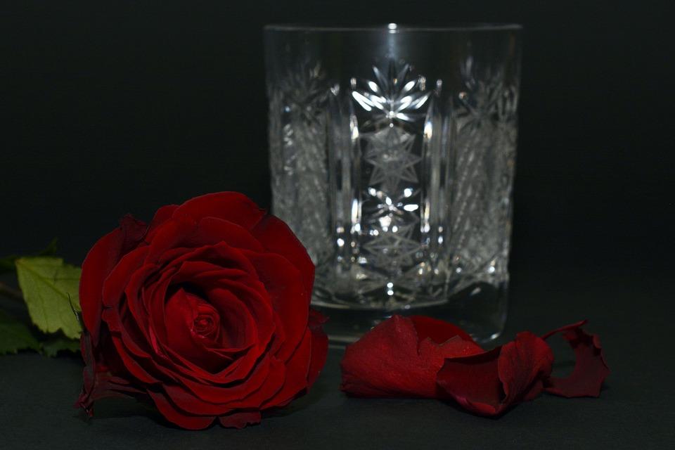 rose-1473681_960_720