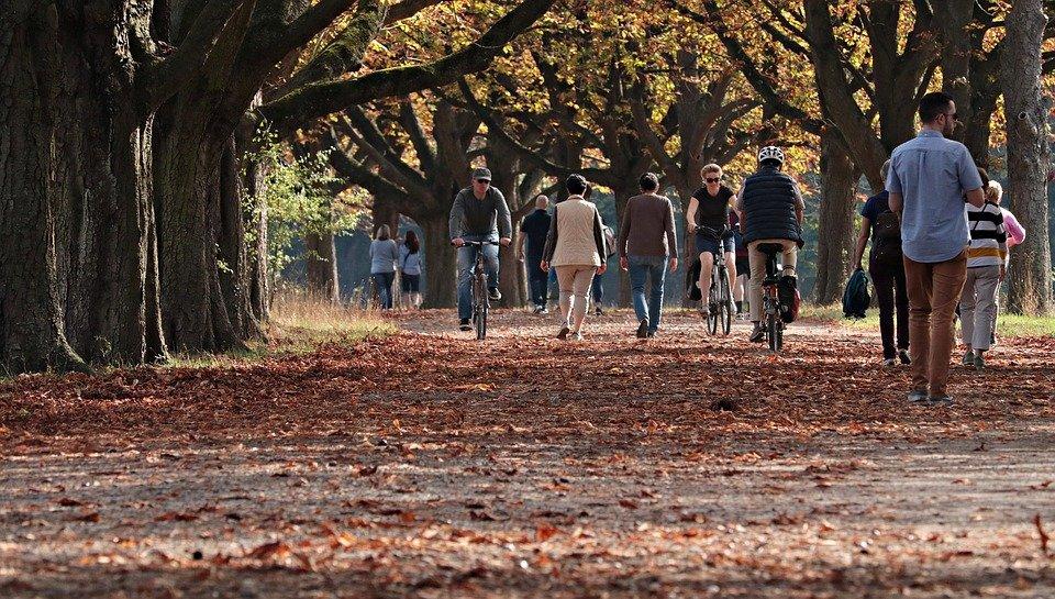autumn-3731094_960_720